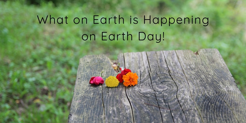 Since 1970 we have been formally celebrating Earth Day globally on April 22nd. This year you can celebrate right here in Phoenix with some fun events and fundraising efforts!